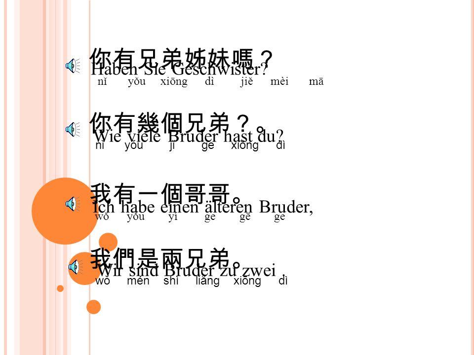你有兄弟姊妹嗎? nǐ yǒu xiōng dì jiě mèi mā Haben Sie Geschwister.