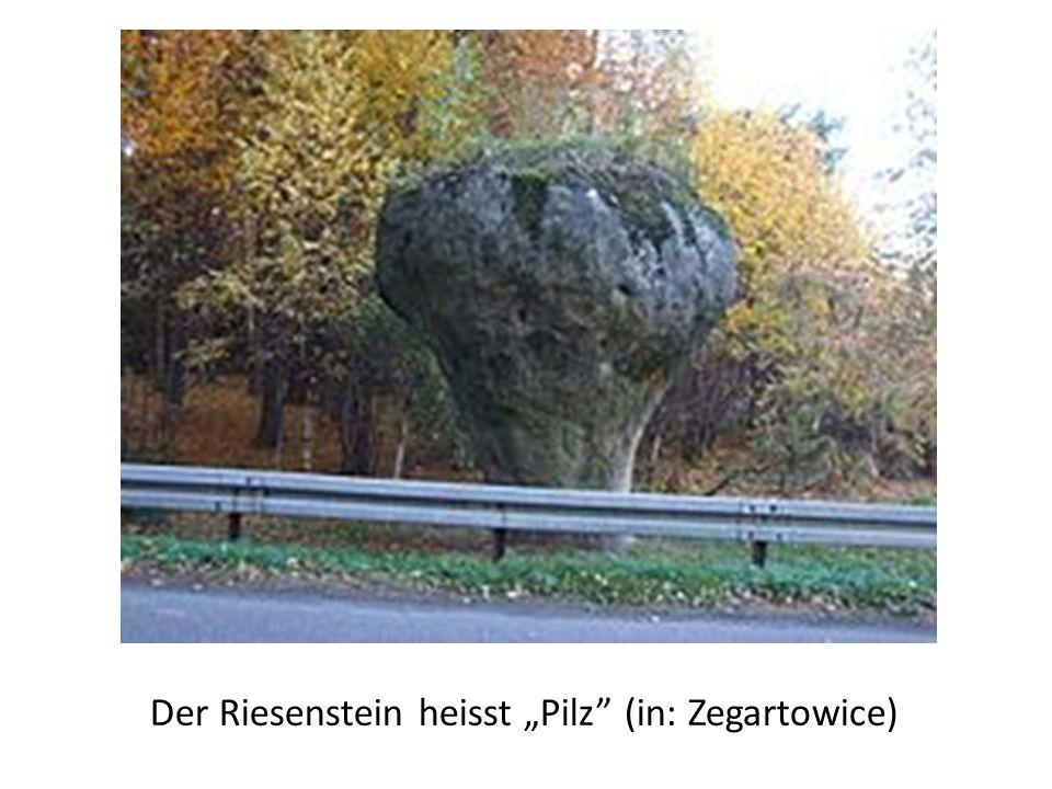 "Der Riesenstein heisst ""Pilz (in: Zegartowice)"