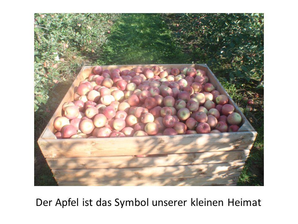 Der Apfel ist das Symbol unserer kleinen Heimat