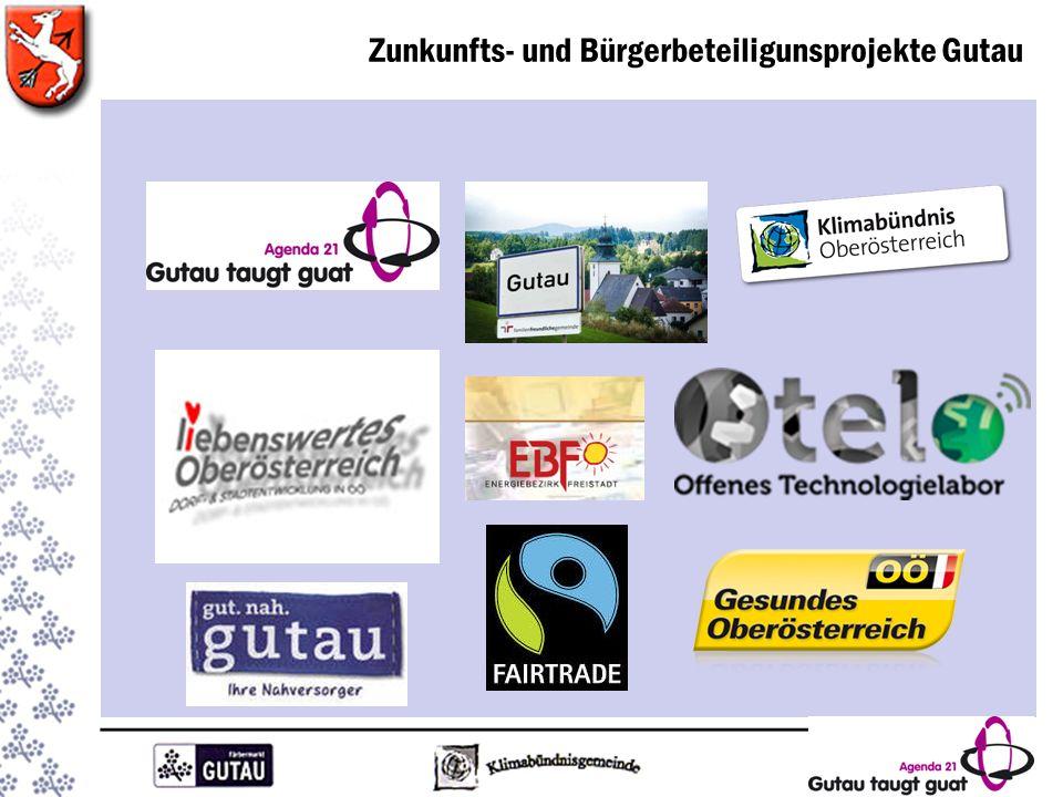 Organisation Kernteam Agenda 21 Ansprechpartner: Mag.