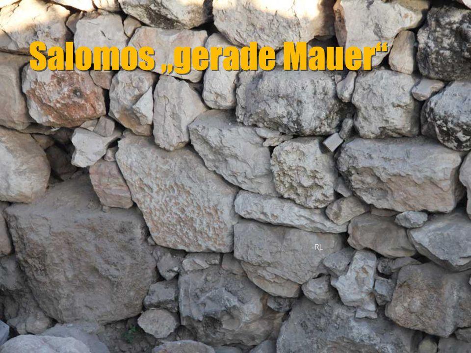 """Salomos """"gerade Mauer"""" RL"""