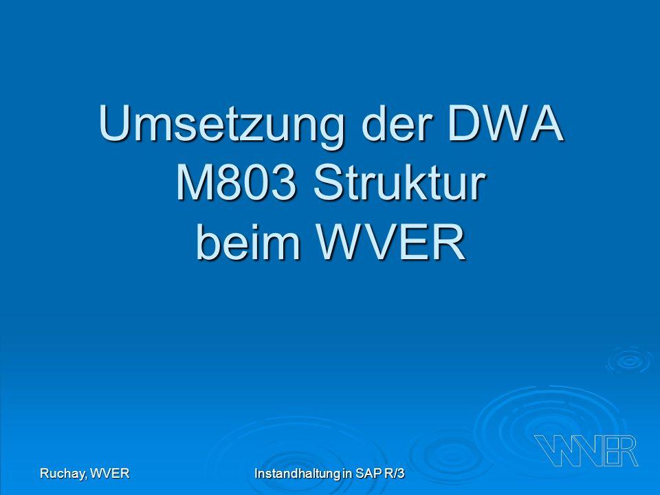 Ruchay, WVERInstandhaltung in SAP R/3 Umsetzung der DWA M803 Struktur beim WVER
