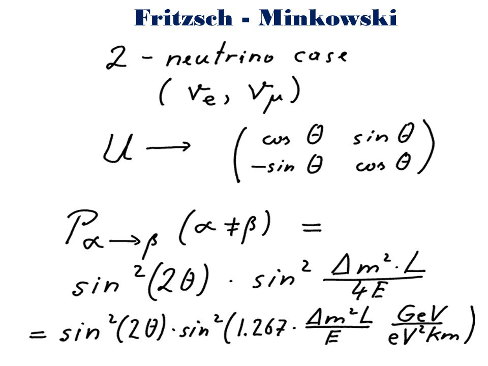 Fritzsch - Minkowski