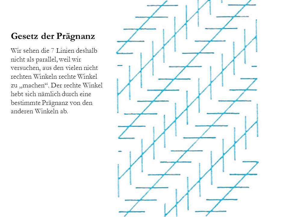 """Gesetz der Prägnanz Wir sehen die 7 Linien deshalb nicht als parallel, weil wir versuchen, aus den vielen nicht rechten Winkeln rechte Winkel zu """"mach"""