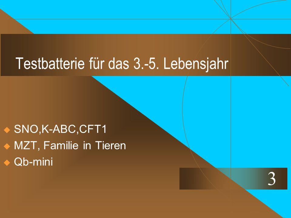 Testbatterie für das 3.-5. Lebensjahr  SNO,K-ABC,CFT1  MZT, Familie in Tieren  Qb-mini 3