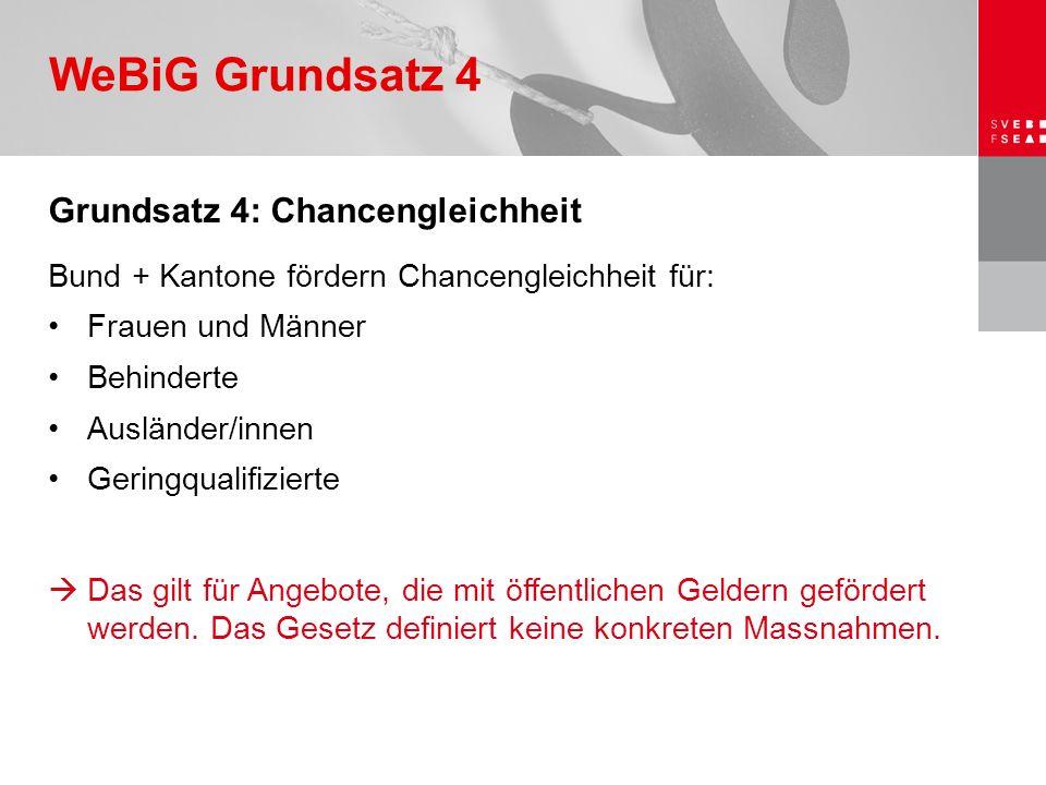 Grundsatz 4: Chancengleichheit Bund + Kantone fördern Chancengleichheit für: Frauen und Männer Behinderte Ausländer/innen Geringqualifizierte  Das gi