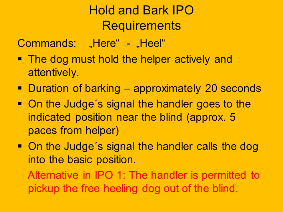 "Hold and Bark IPO Requirements Commands: ""Here"" - ""Heel""  The dog must hold the helper actively and attentively.  Duration of barking – approximatel"