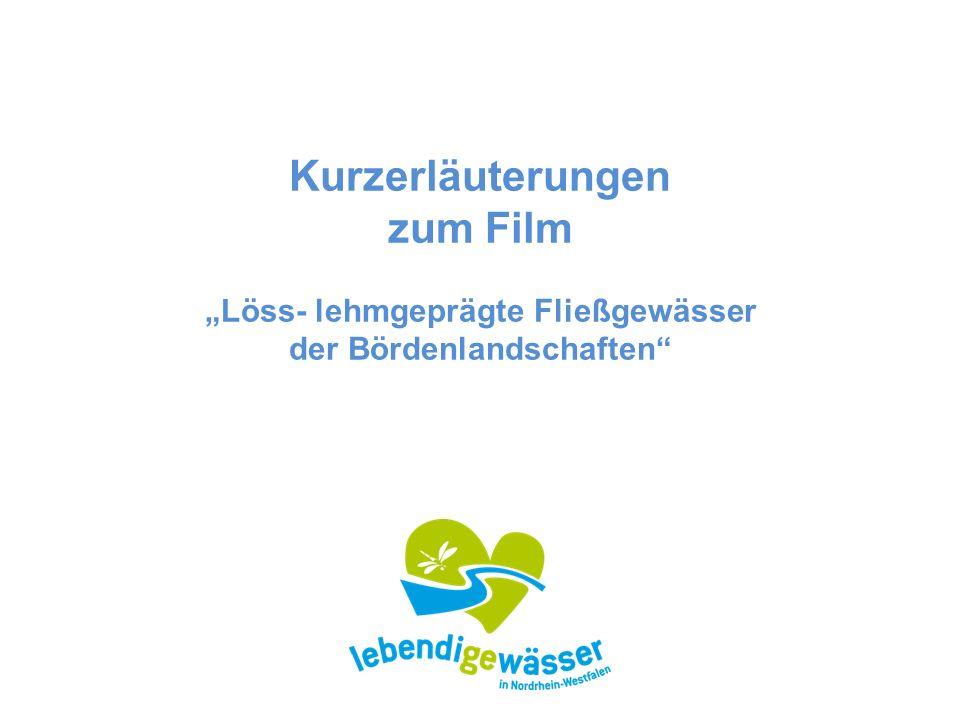 """Kurzerläuterungen zum Film """"Löss- lehmgeprägte Fließgewässer der Bördenlandschaften"""