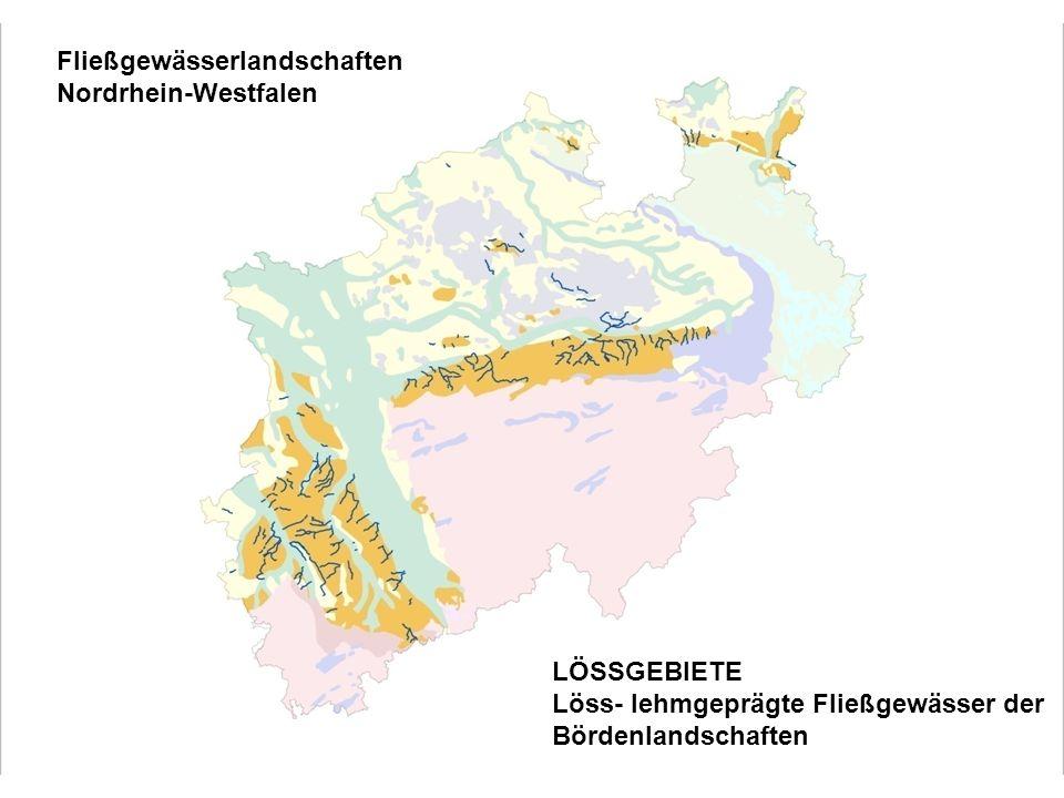 Löss-Lehmgeprägte Fließgewässer der Bördenlandschaften Filmablauf (5:44) -ca.