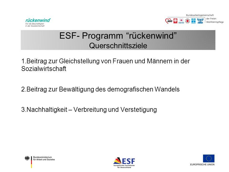 ESF- Programm rückenwind Querschnittsziele 1.Beitrag zur Gleichstellung von Frauen und Männern in der Sozialwirtschaft 2.Beitrag zur Bewältigung des demografischen Wandels 3.Nachhaltigkeit – Verbreitung und Verstetigung