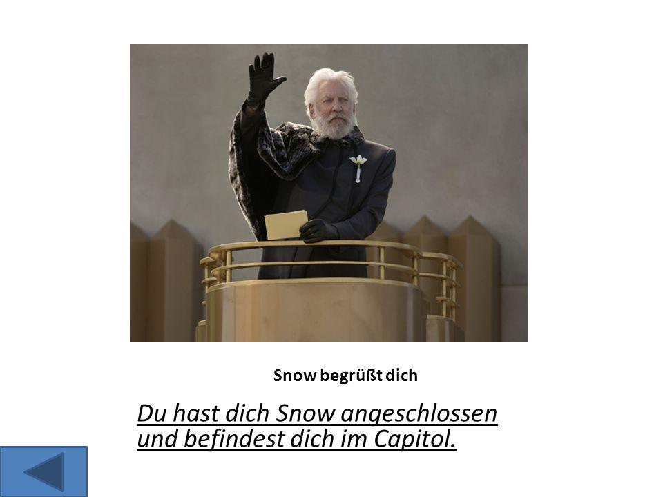 Snow begrüßt dich Du hast dich Snow angeschlossen und befindest dich im Capitol.