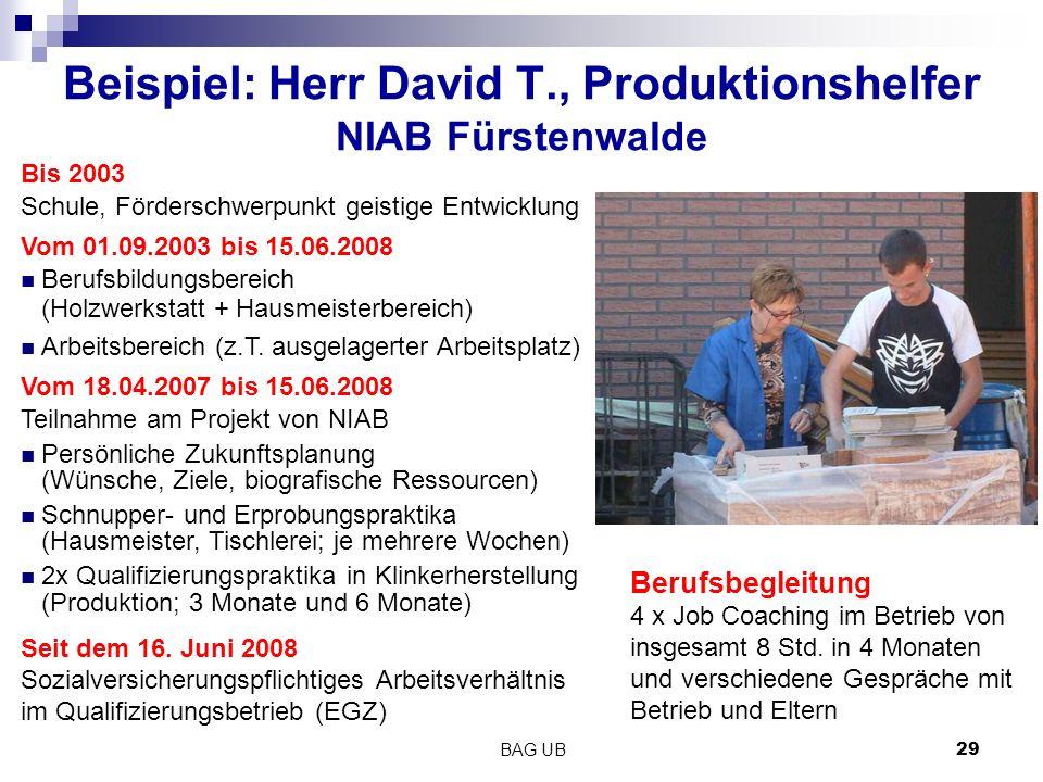 BAG UB 29 Beispiel: Herr David T., Produktionshelfer NIAB Fürstenwalde Bis 2003 Schule, Förderschwerpunkt geistige Entwicklung Vom 01.09.2003 bis 15.06.2008 Berufsbildungsbereich (Holzwerkstatt + Hausmeisterbereich) Arbeitsbereich (z.T.