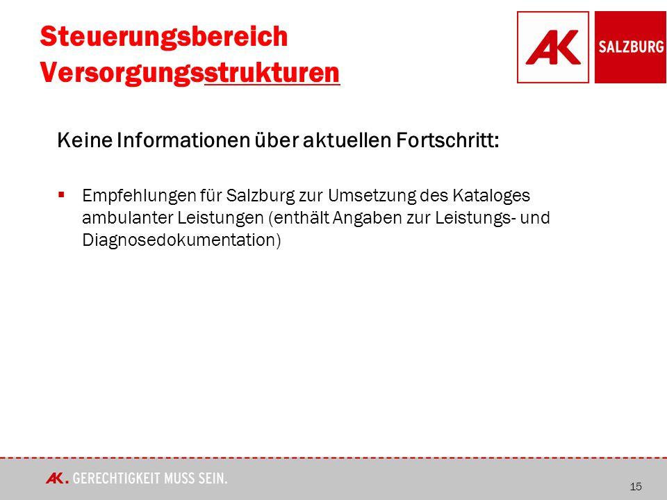 Steuerungsbereich Versorgungsstrukturen Keine Informationen über aktuellen Fortschritt:  Empfehlungen für Salzburg zur Umsetzung des Kataloges ambulanter Leistungen (enthält Angaben zur Leistungs- und Diagnosedokumentation) 15