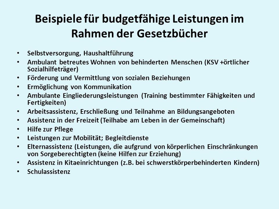 Beispiele für budgetfähige Leistungen im Rahmen der Gesetzbücher Selbstversorgung, Haushaltführung Ambulant betreutes Wohnen von behinderten Menschen