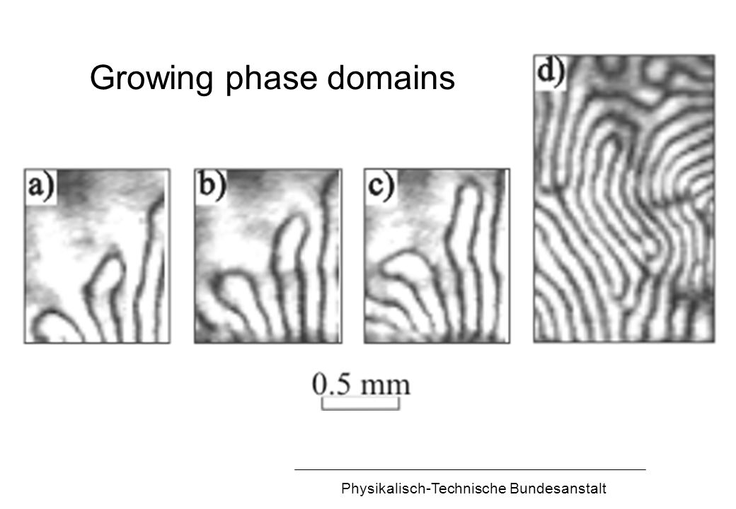 Physikalisch-Technische Bundesanstalt Growing phase domains