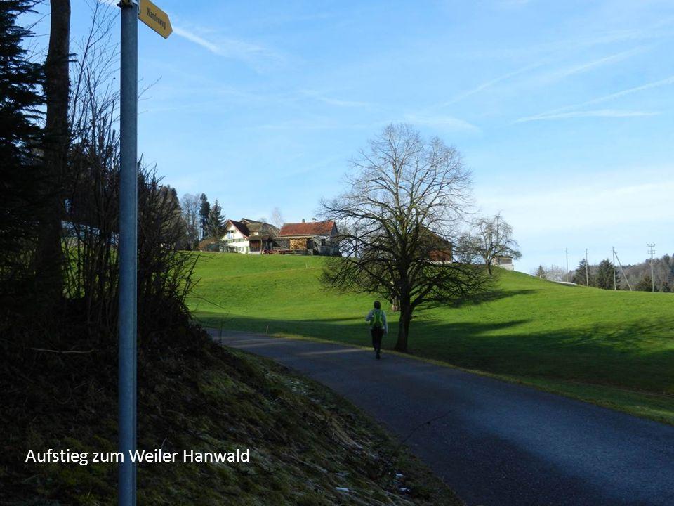 Aufstieg zum Weiler Hanwald