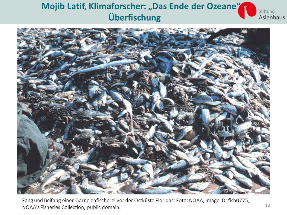 """Mojib Latif, Klimaforscher: """"Das Ende der Ozeane"""""""" Überfischung 18 Fang und Beifang einer Garnelenfischerei vor der Ostküste Floridas; Foto: NOAA, Ima"""