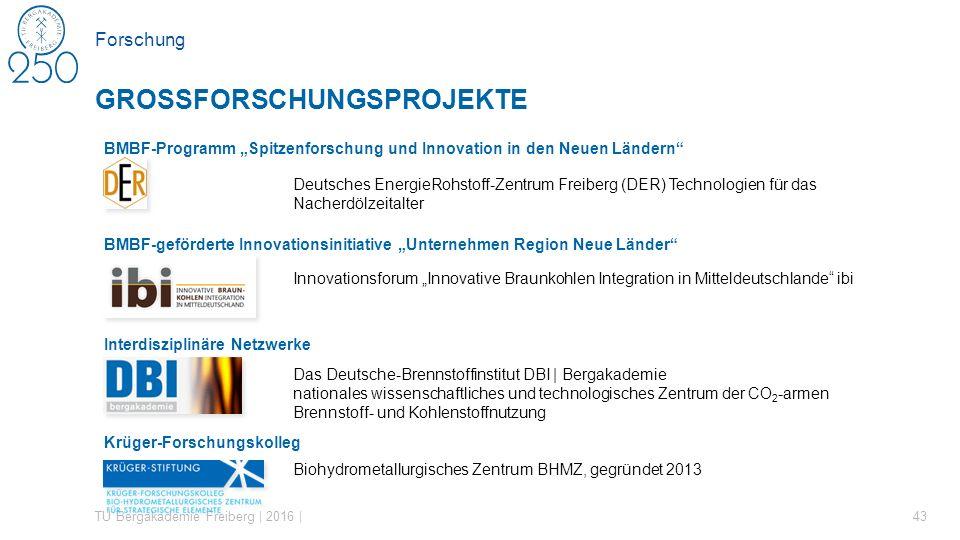 """BMBF-Programm """"Spitzenforschung und Innovation in den Neuen Ländern"""" Deutsches EnergieRohstoff-Zentrum Freiberg (DER) Technologien für das Nacherdölze"""