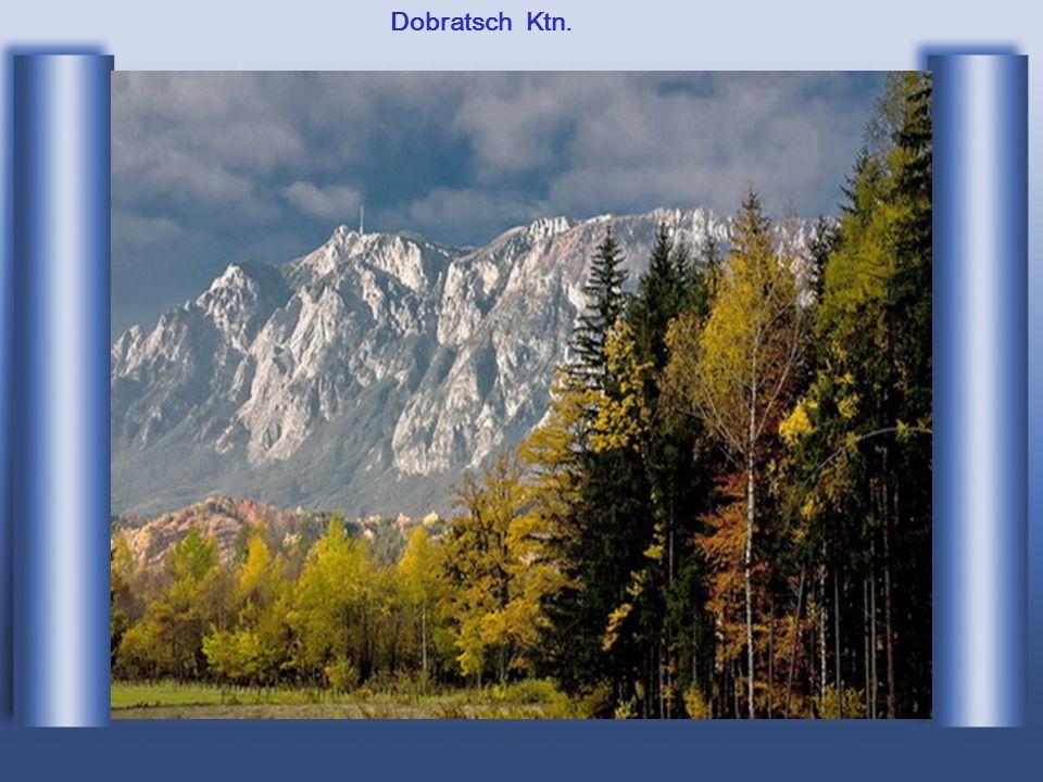 5 Neusiedlersee Bgl.
