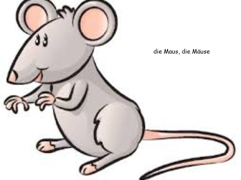 die Maus, die Mäuse