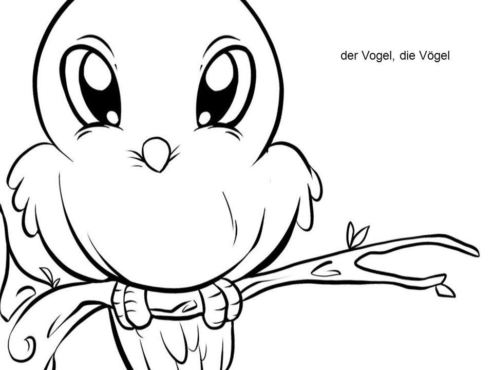 der Vogel, die Vögel