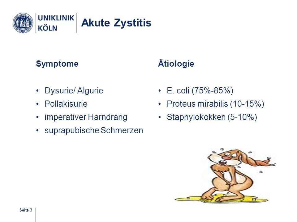 Seite 3 Akute Zystitis Symptome Dysurie/ Algurie Pollakisurie imperativer Harndrang suprapubische Schmerzen Ätiologie E. coli (75%-85%) Proteus mirabi