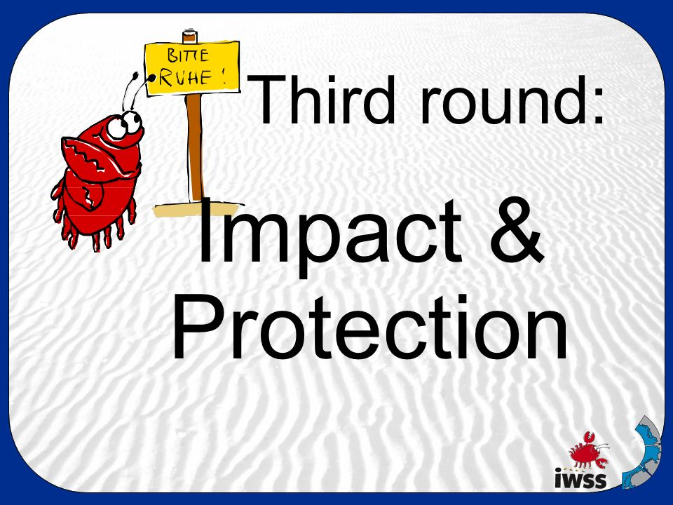 Third round: Impact & Protection