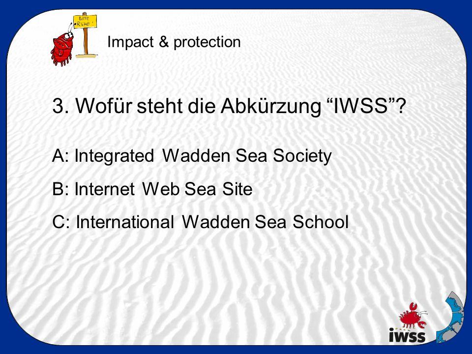 3. Wofür steht die Abkürzung IWSS .