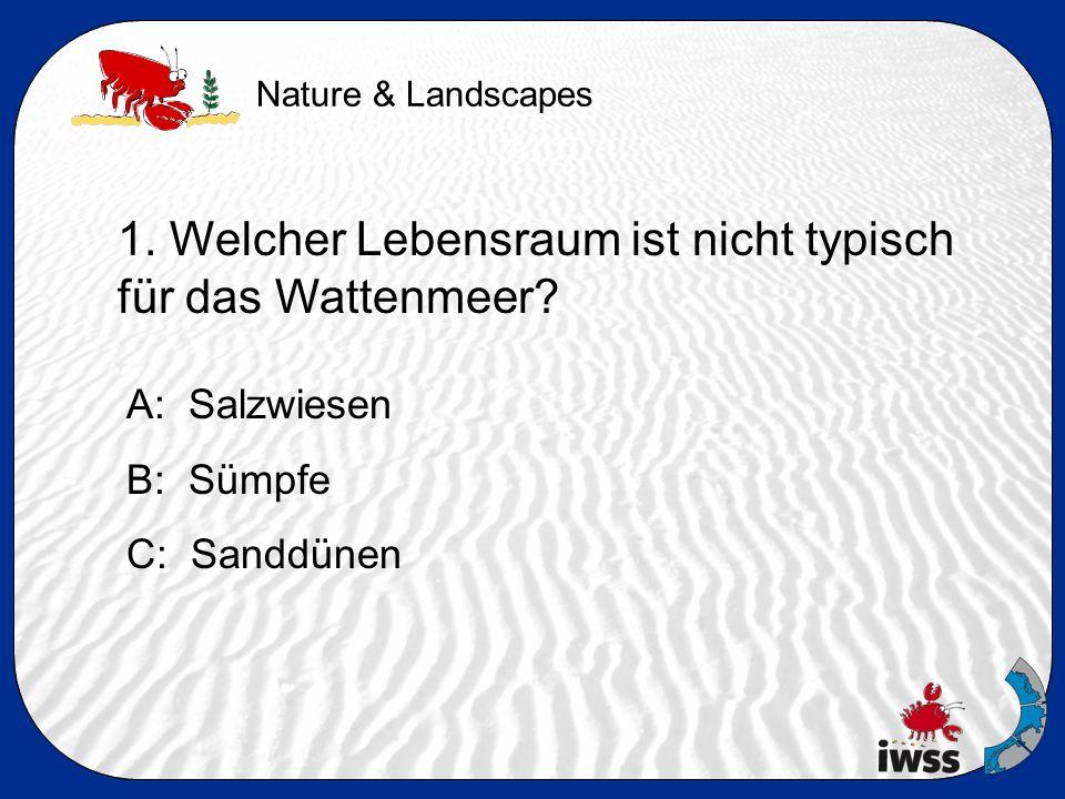 1. Welcher Lebensraum ist nicht typisch für das Wattenmeer A: Salzwiesen B: Sümpfe C: Sanddünen