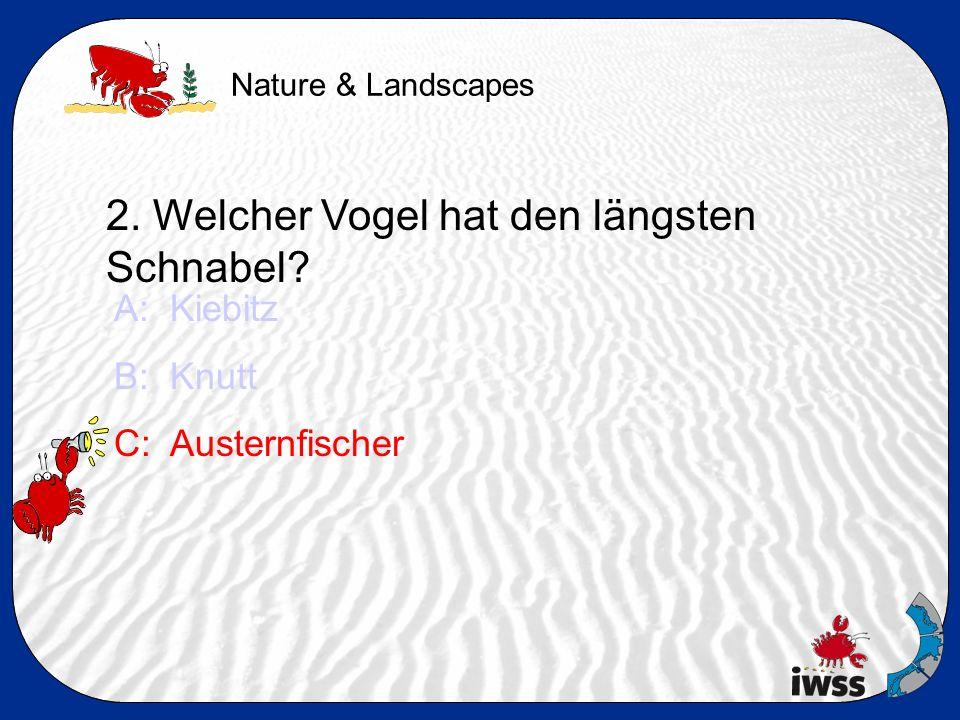 Nature & Landscapes 3.Welches Tier lebt nicht im Wattboden.