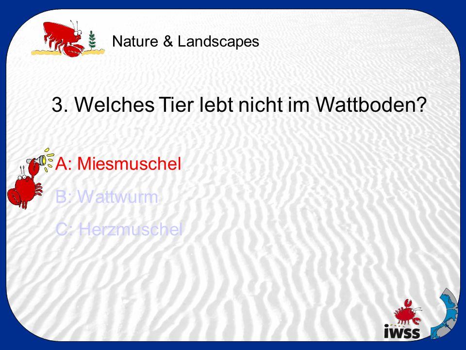 Nature & Landscapes 3. Welches Tier lebt nicht im Wattboden.