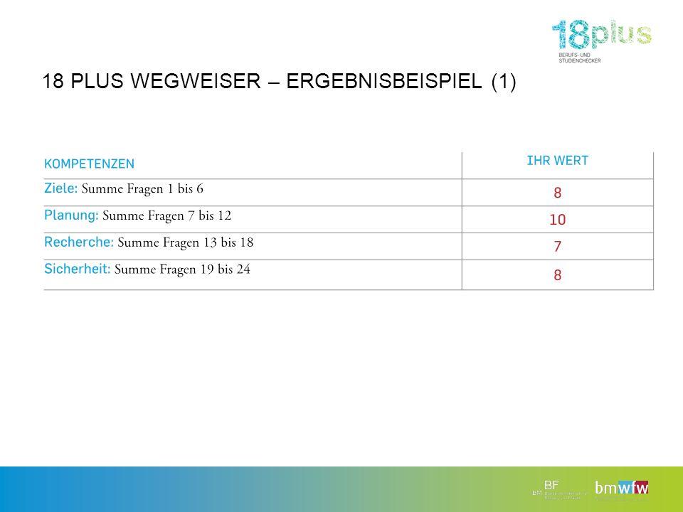 18 PLUS WEGWEISER – ERGEBNISBEISPIEL (1)