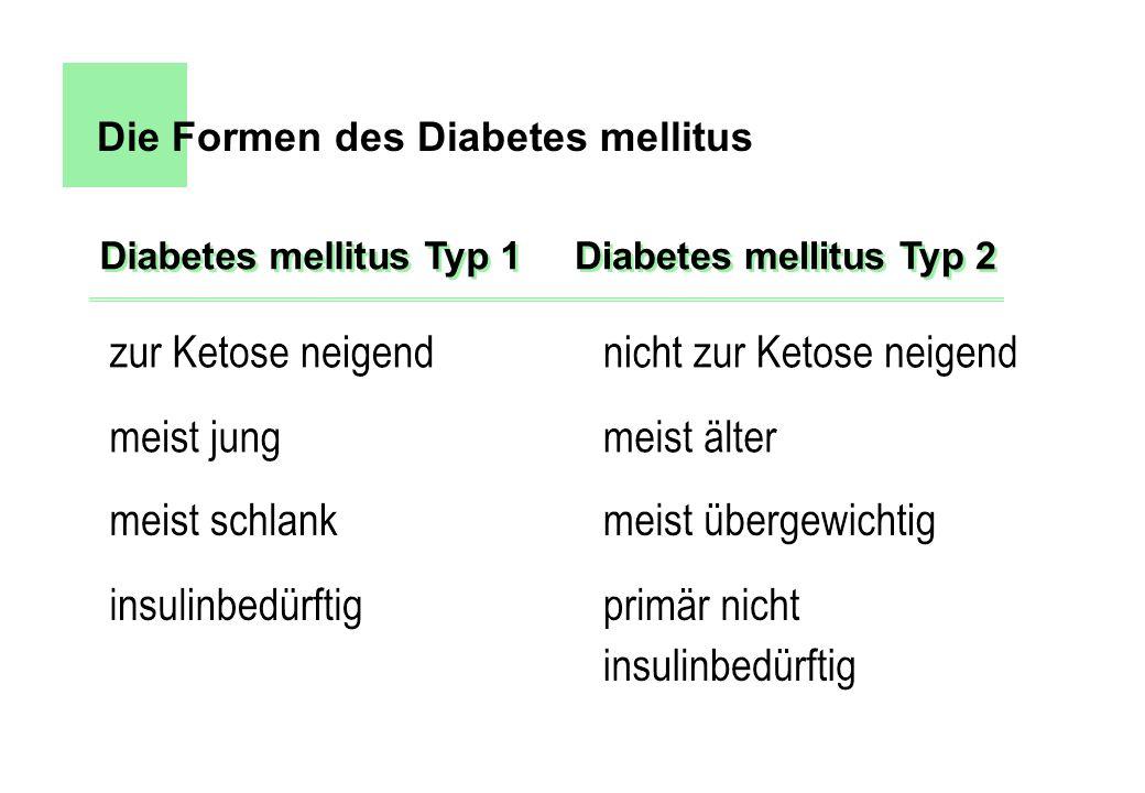 Die Formen des Diabetes mellitus Diabetes mellitus Typ 1 Diabetes mellitus Typ 2