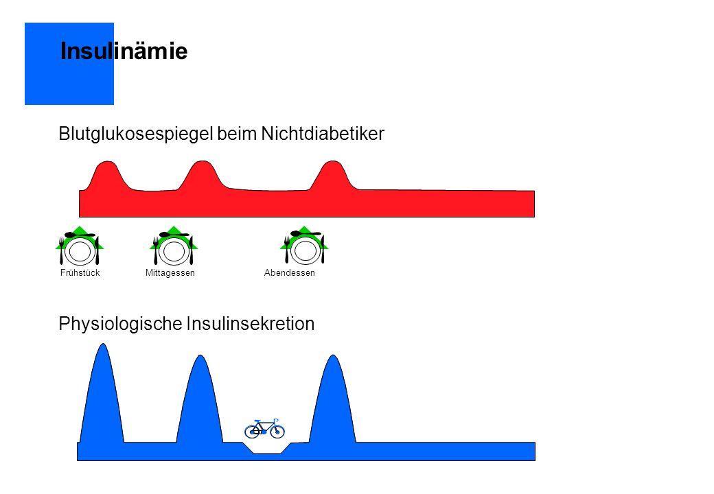 Therapiestrategien Konventionelle Insulintherapie Präprandiale Injektion von Normalinsulin MorgensAbendsNormalinsulin undVerzögerungsinsulin Morgens Mittags Abends Normalinsulin Normalinsulin Normalinsulin Selbstgebildetes Insulin