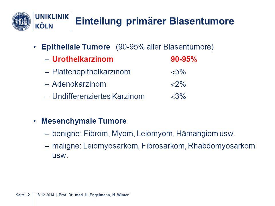 Seite 12 18.12.2014 | Prof. Dr. med. U. Engelmann, N. Winter Einteilung primärer Blasentumore Epitheliale Tumore(90-95% aller Blasentumore) –Urothelka