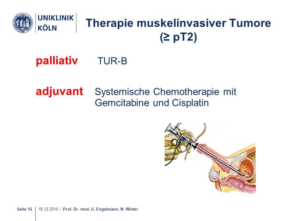 Seite 16 18.12.2014 | Prof. Dr. med. U. Engelmann, N. Winter Therapie muskelinvasiver Tumore (≥ pT2) palliativ TUR-B adjuvant Systemische Chemotherapi