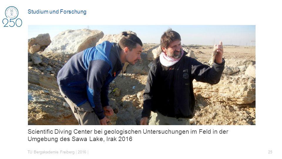 Scientific Diving Center bei geologischen Untersuchungen im Feld in der Umgebung des Sawa Lake, Irak 2016 TU Bergakademie Freiberg | 2016 | 25 Studium