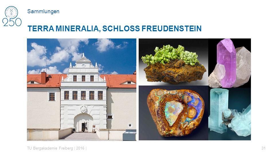 TU Bergakademie Freiberg | 2016 | 31 TERRA MINERALIA, SCHLOSS FREUDENSTEIN