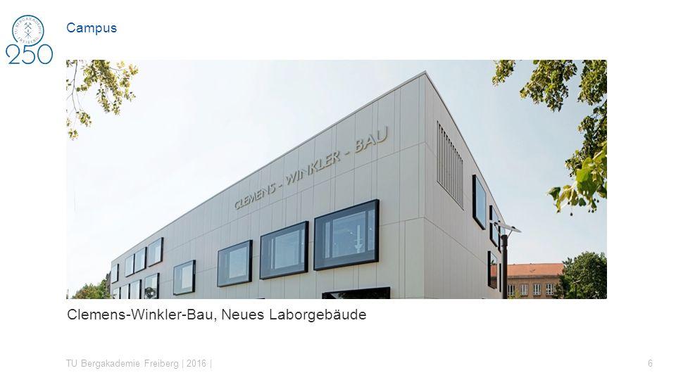 Zahlen, Daten, Fakten TU Bergakademie Freiberg | 2016 | 37 DIE UNIVERSITÄT IN ZAHLEN