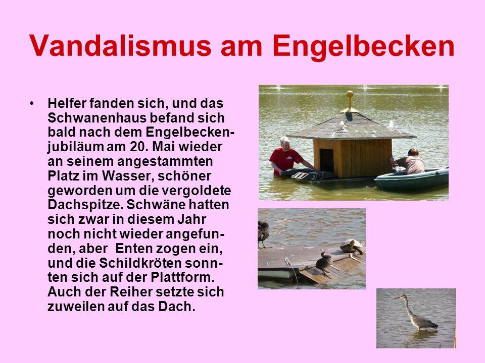 Vandalismus am Engelbecken Helfer fanden sich, und das Schwanenhaus befand sich bald nach dem Engelbecken- jubiläum am 20. Mai wieder an seinem angest