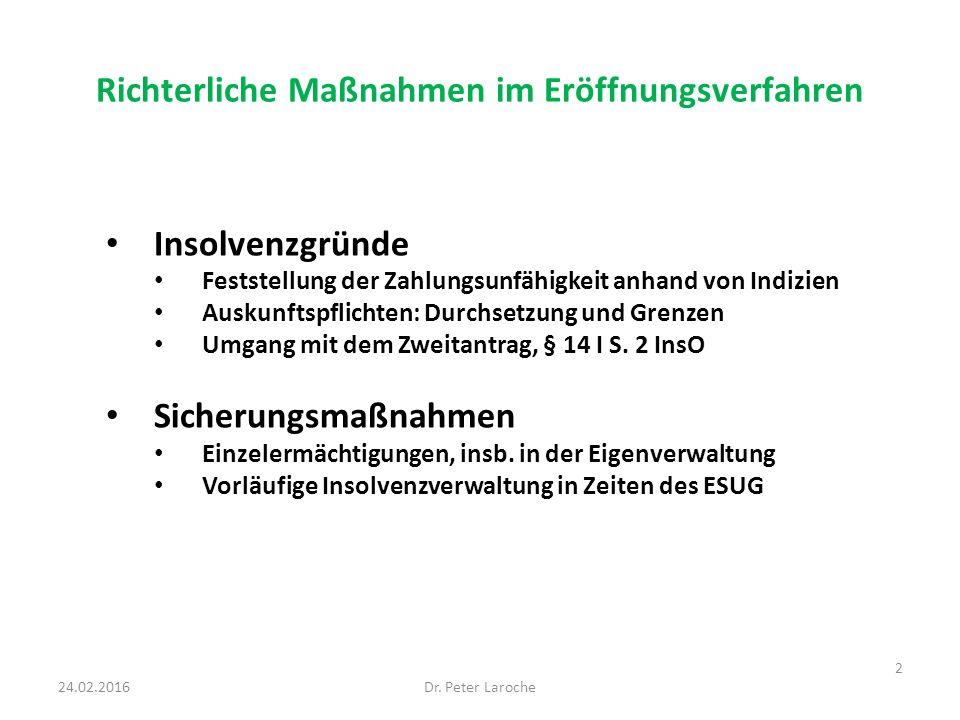 Richterliche Maßnahmen im Eröffnungsverfahren Insolvenzgründe Feststellung der Zahlungsunfähigkeit anhand von Indizien Auskunftspflichten: Durchsetzung und Grenzen Umgang mit dem Zweitantrag, § 14 I S.