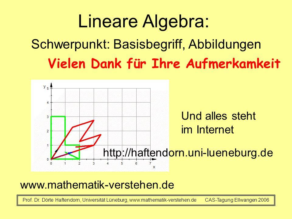 Lineare Algebra: Schwerpunkt: Basisbegriff, Abbildungen Prof. Dr. Dörte Haftendorn, Universität Lüneburg, www.mathematik-verstehen.de CAS-Tagung Ellwa