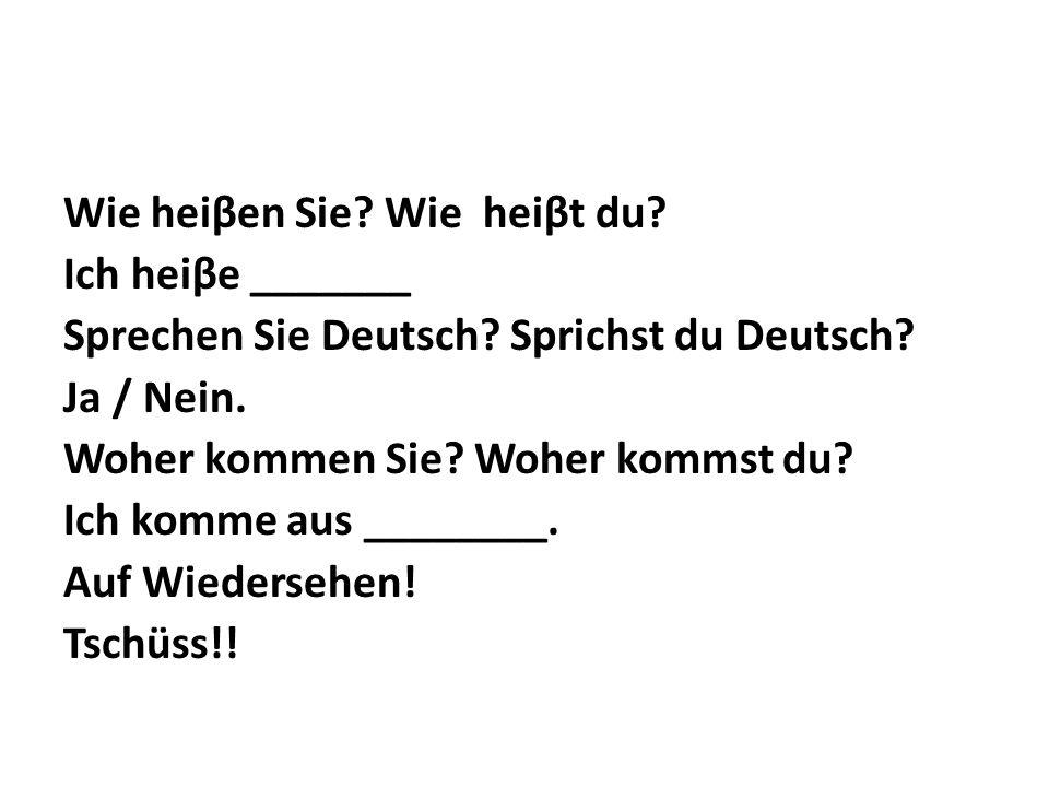 Wie heiβen Sie. Wie heiβt du. Ich heiβe _______ Sprechen Sie Deutsch.