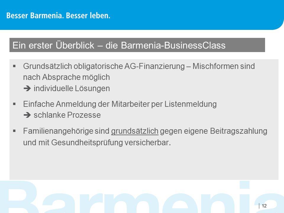  12 Ein erster Überblick – die Barmenia-BusinessClass  Grundsätzlich obligatorische AG-Finanzierung – Mischformen sind nach Absprache möglich  indi