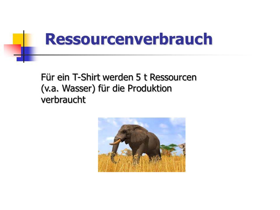 Ressourcenverbrauch Für ein T-Shirt werden 5 t Ressourcen (v.a.
