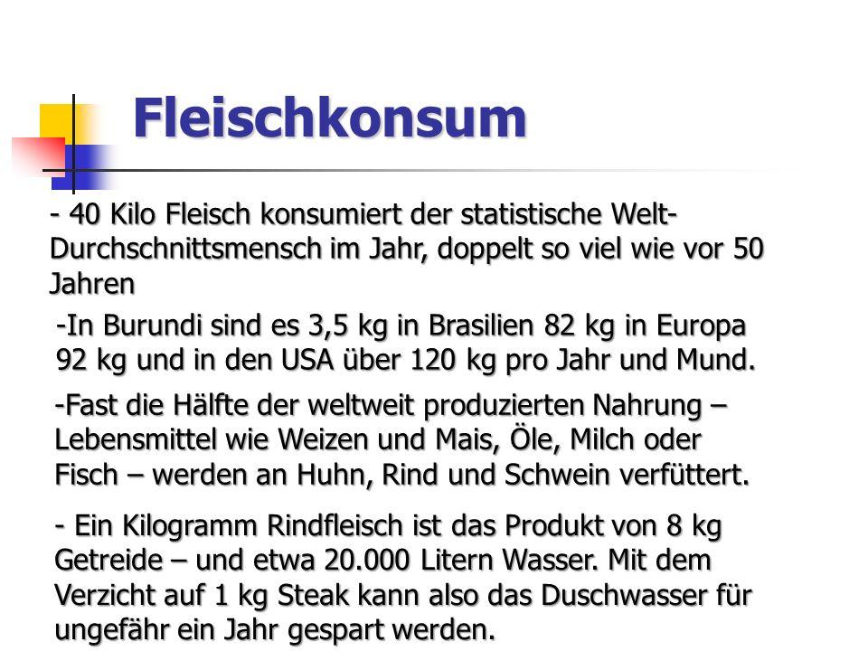 Fleischkonsum - 40 Kilo Fleisch konsumiert der statistische Welt- Durchschnittsmensch im Jahr, doppelt so viel wie vor 50 Jahren -In Burundi sind es 3,5 kg in Brasilien 82 kg in Europa 92 kg und in den USA über 120 kg pro Jahr und Mund.