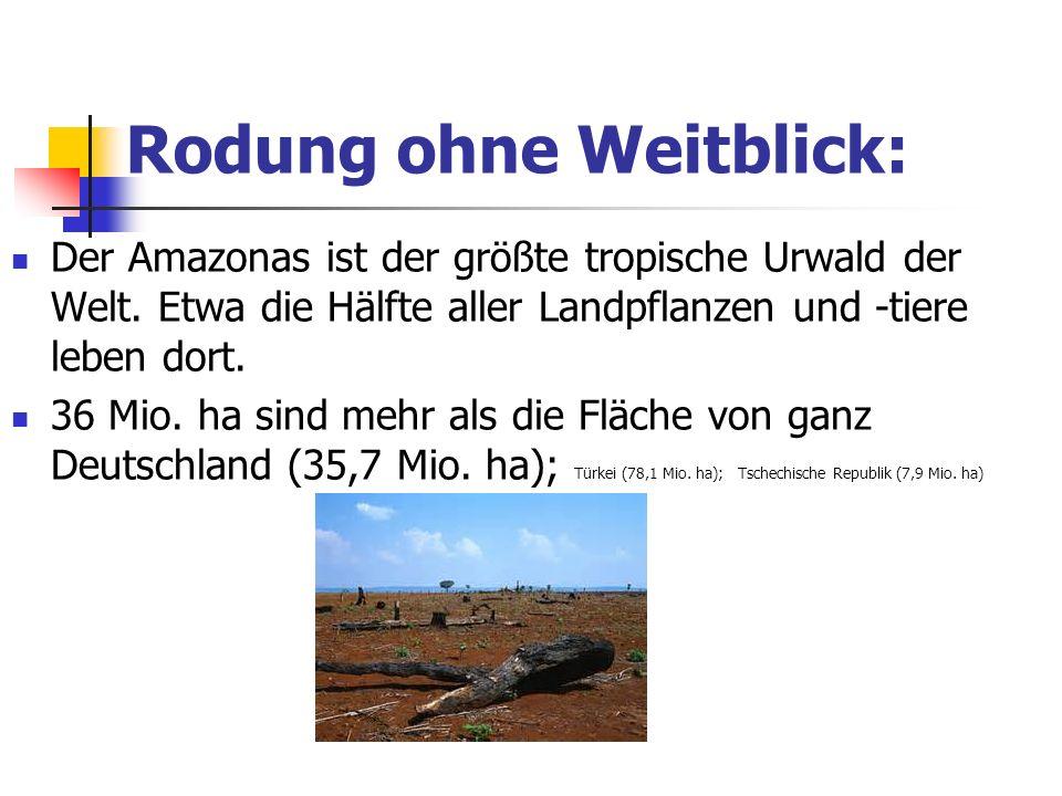 Wie viel Wasser verbraucht ein Deutscher pro Tag? 55 Liter 95 Liter 122 Liter 212 Liter