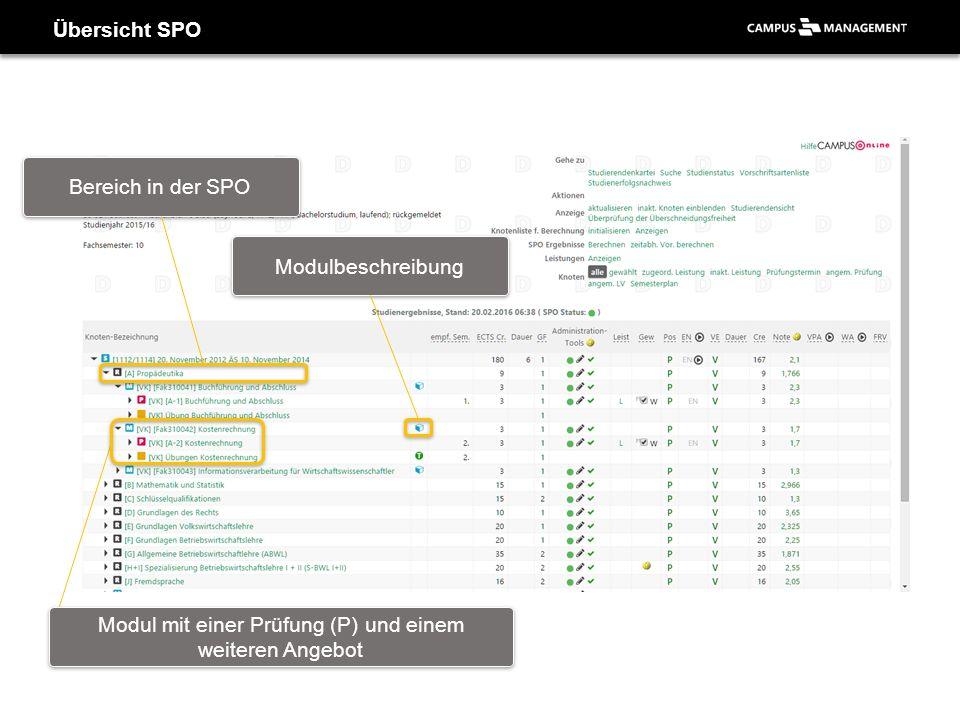 Übersicht SPO Bereich in der SPO Modul mit einer Prüfung (P) und einem weiteren Angebot Modulbeschreibung