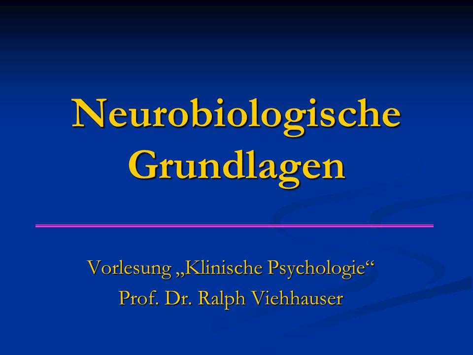 """Neurobiologische Grundlagen Vorlesung """"Klinische Psychologie"""" Prof. Dr. Ralph Viehhauser"""
