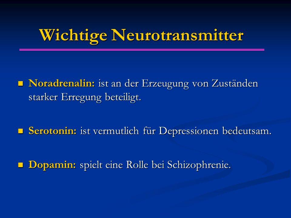 Wichtige Neurotransmitter Noradrenalin: ist an der Erzeugung von Zuständen starker Erregung beteiligt. Noradrenalin: ist an der Erzeugung von Zustände